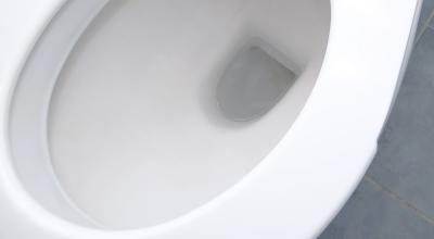 zoom-in image of toilet bowl